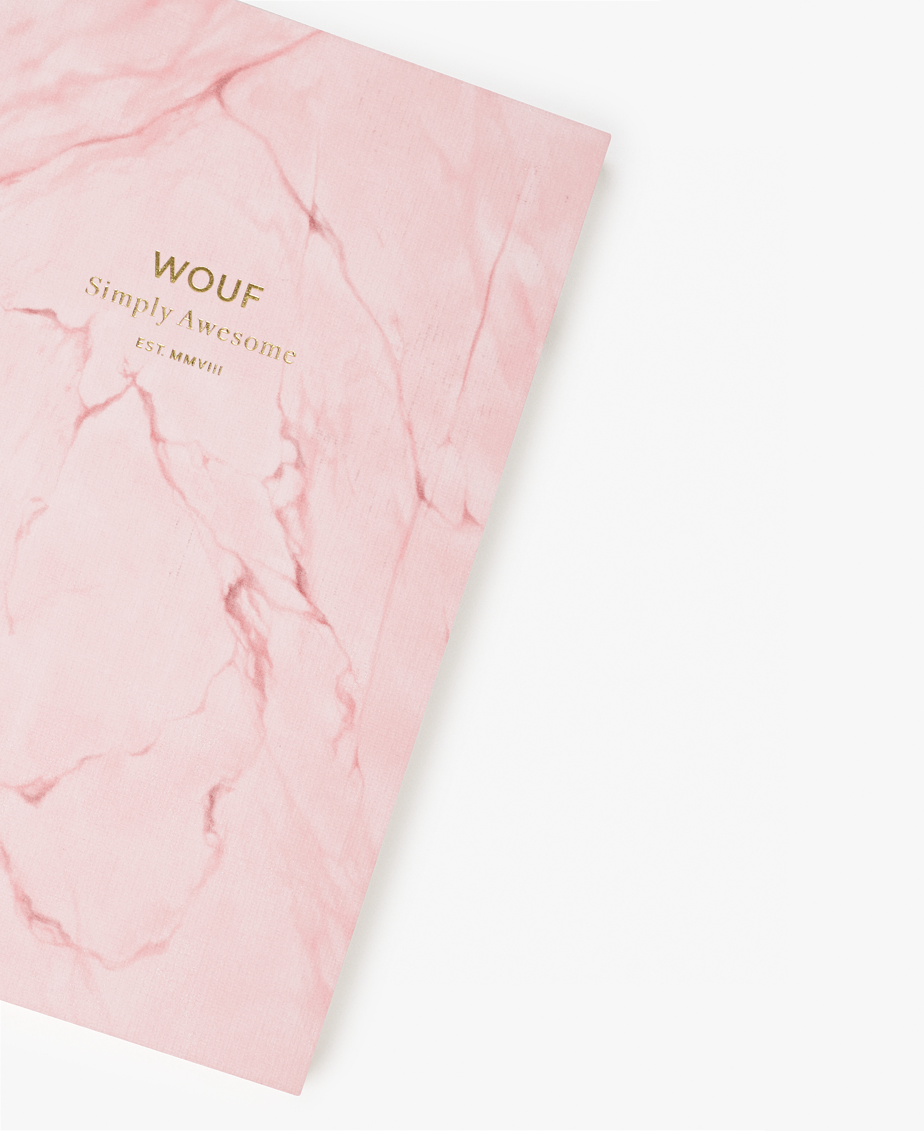 chic woman journal notebook