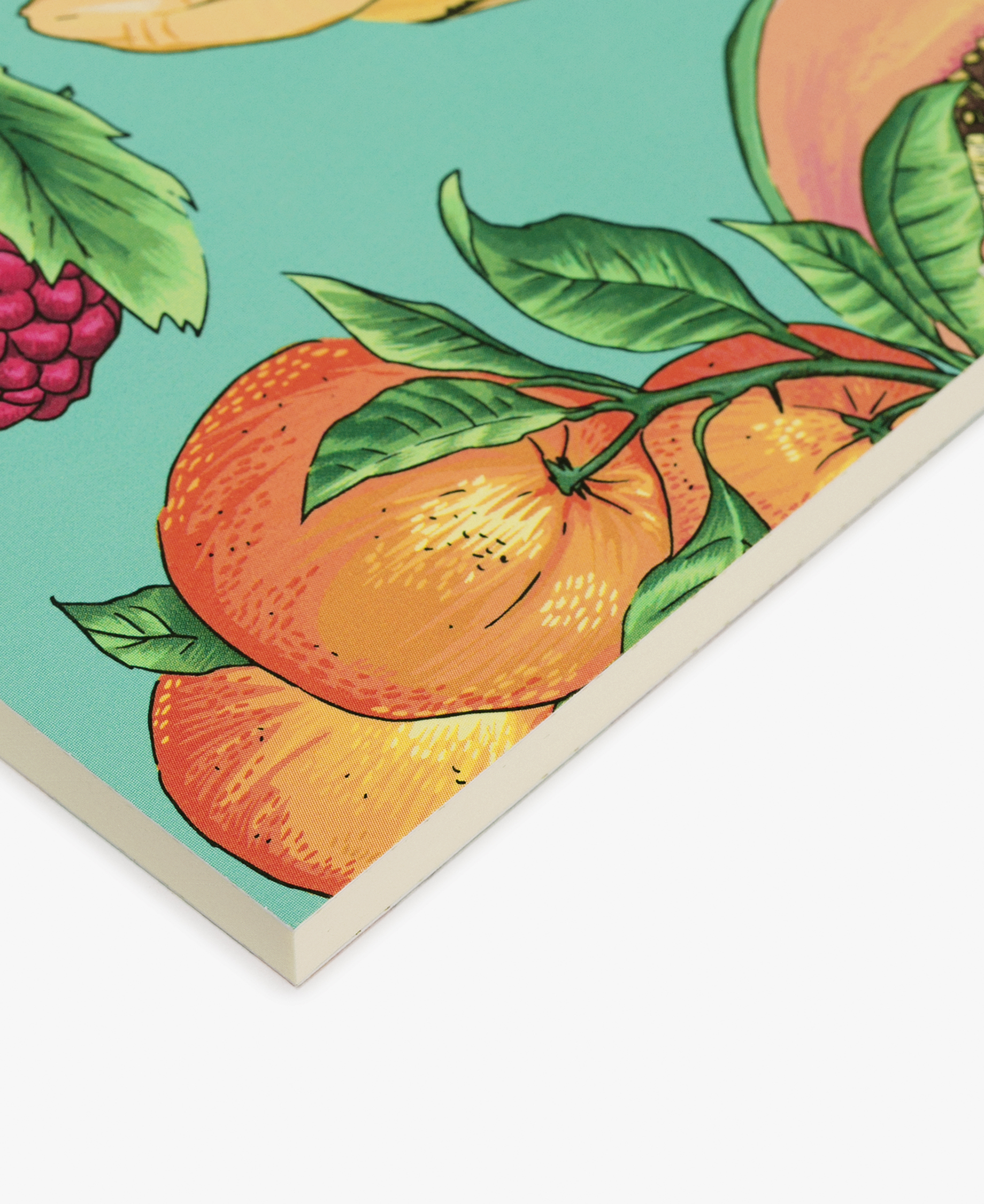 journal notebook with orange fruits