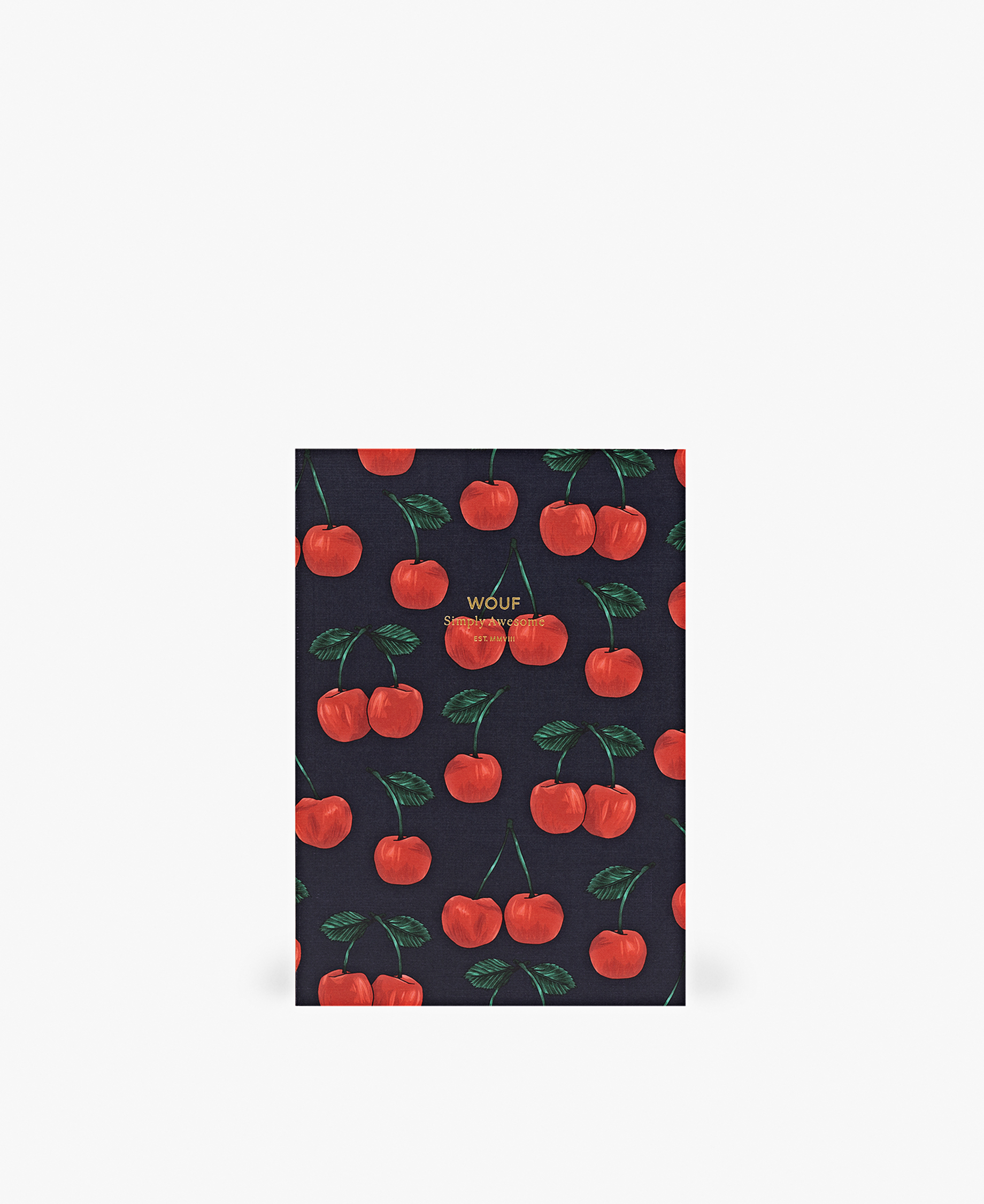 lined journal notebook