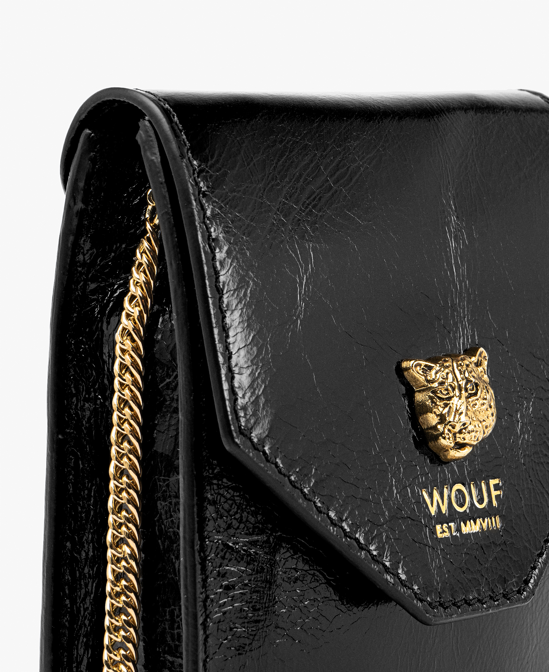 chic woman leather bag