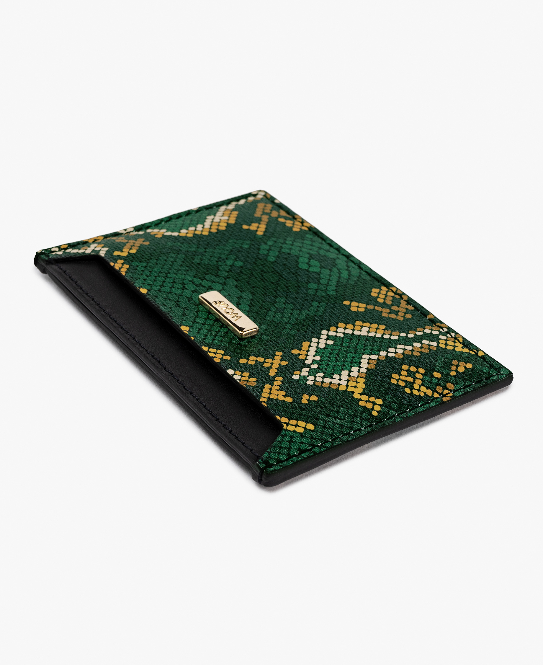 woman credit card holder